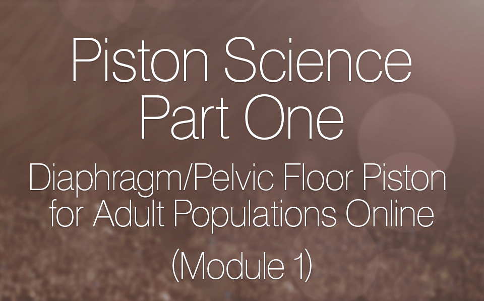 Diaphragm/Pelvic Floor Piston for Adult Populations Online (Module 1)