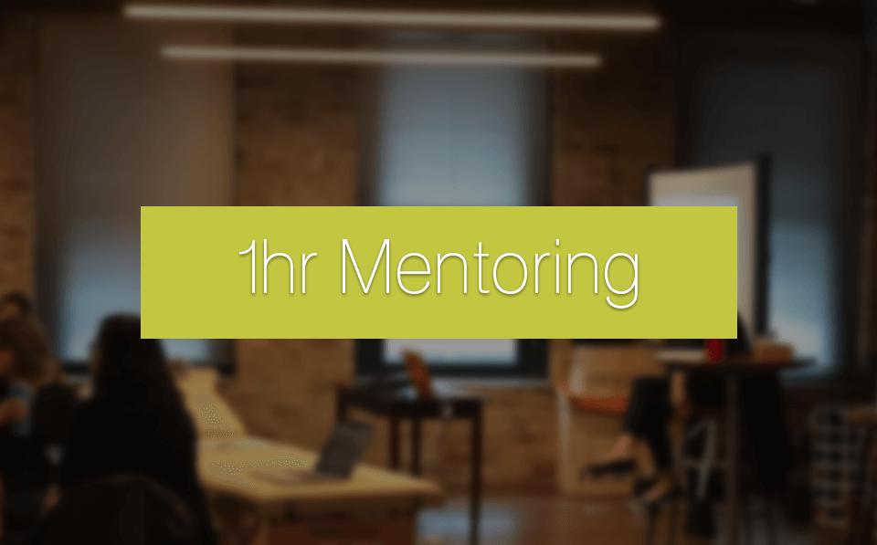 1 hr Mentoring